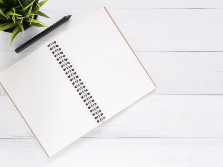 clean desk flat lay notebook with pen and plant